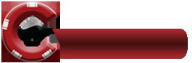 VDKO Logo